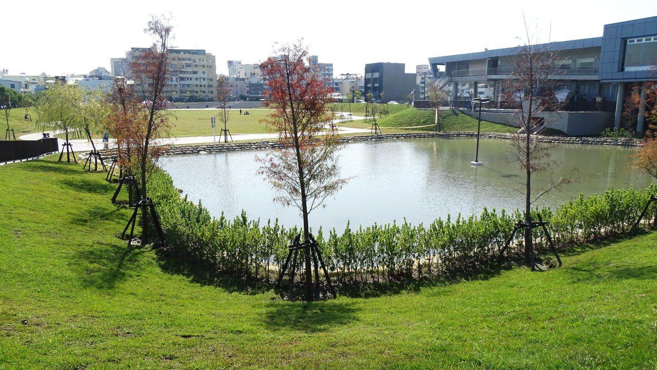有員林秋紅谷美稱的圓林園多功能公園13日啟用。記者何烱榮/攝影