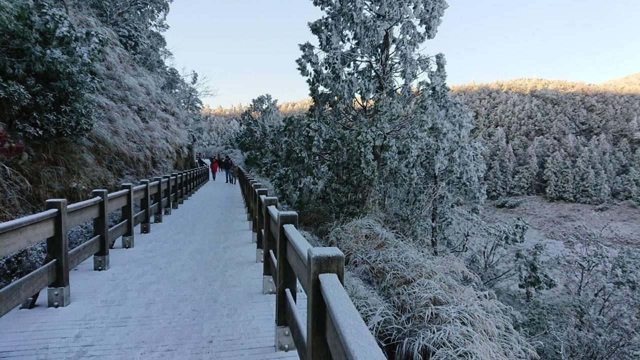 海拔高的翠峰湖步道清晨仍有餘雪未融。圖/羅東林管處提供