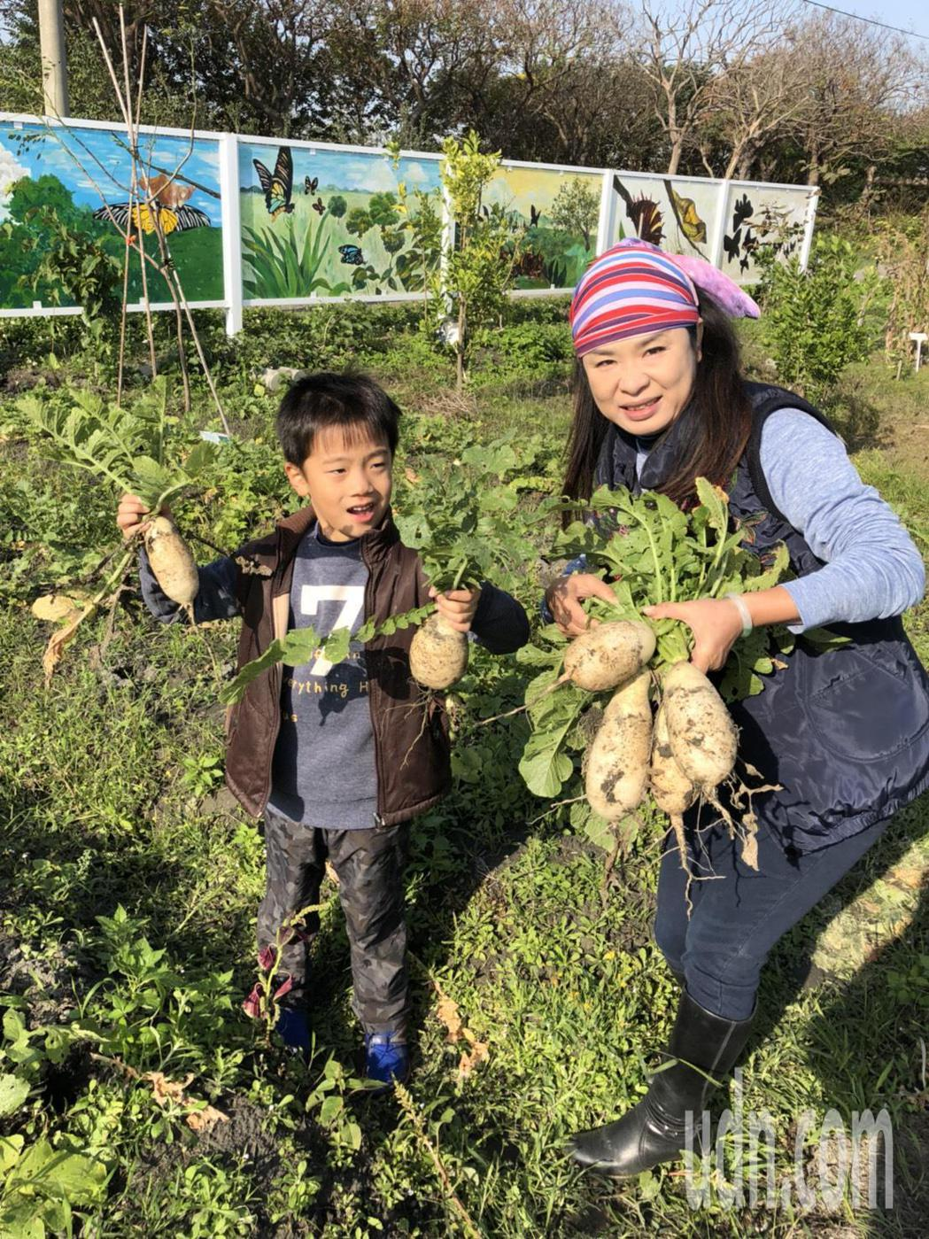 東螺溪生態教育園區結合在地產業及生態旅遊,1月21日將辦千人拔蘿蔔活動。記者林宛...