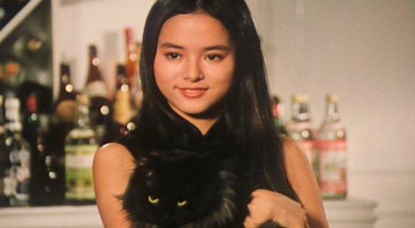 就算在「衛斯理之老貓」中演神祕女郎,葉蘊儀仍然極具玉女神采。圖/摘自HKMDB