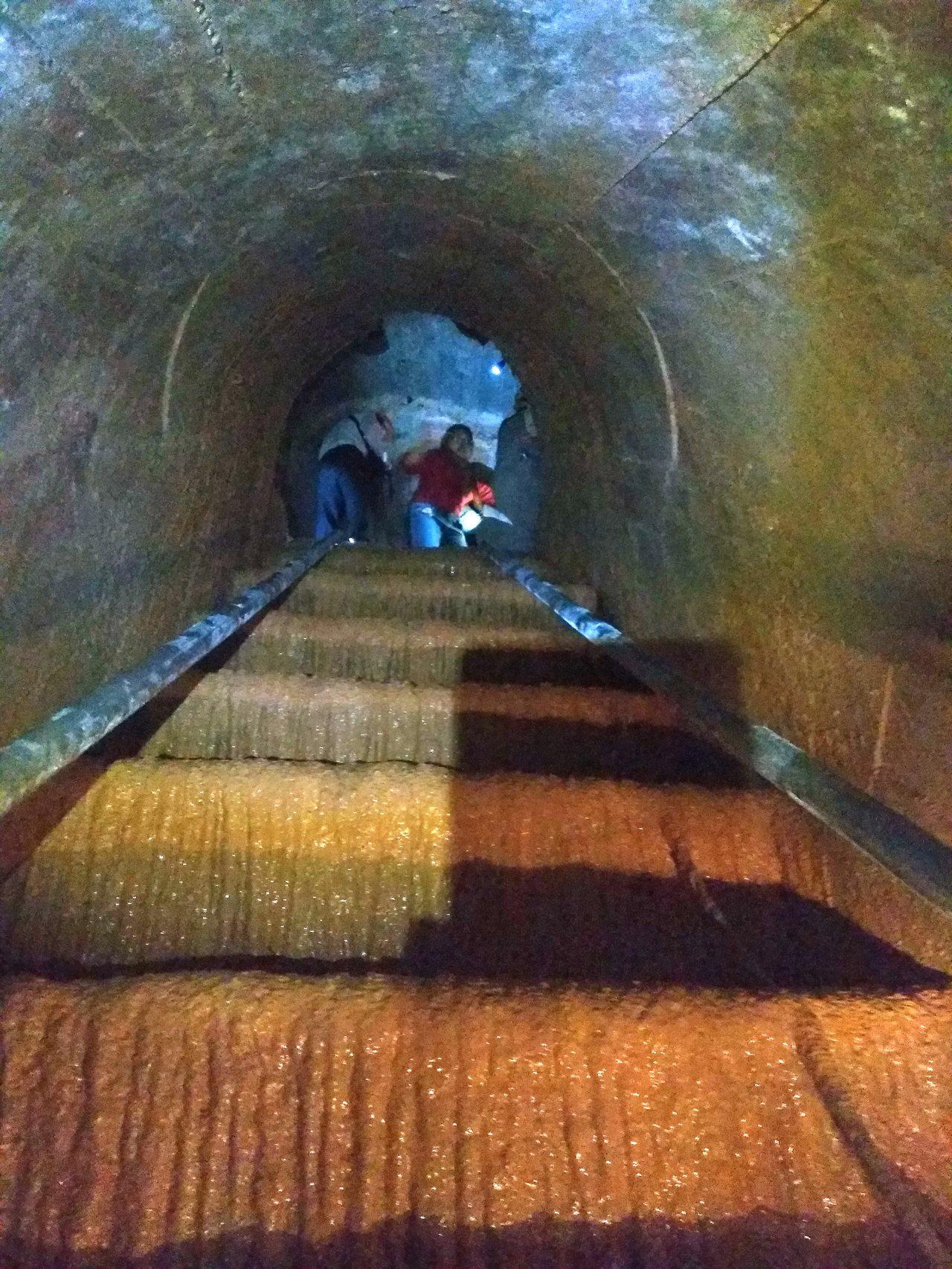 戰備水庫70幾年來無人使用,階梯上結滿鐘乳石,攀爬行走困難。圖/舊城文化協會提供