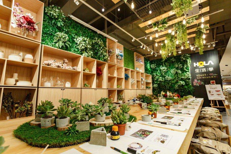 手作水泥盆栽,在家也能自己DIY。圖/HOLA提供