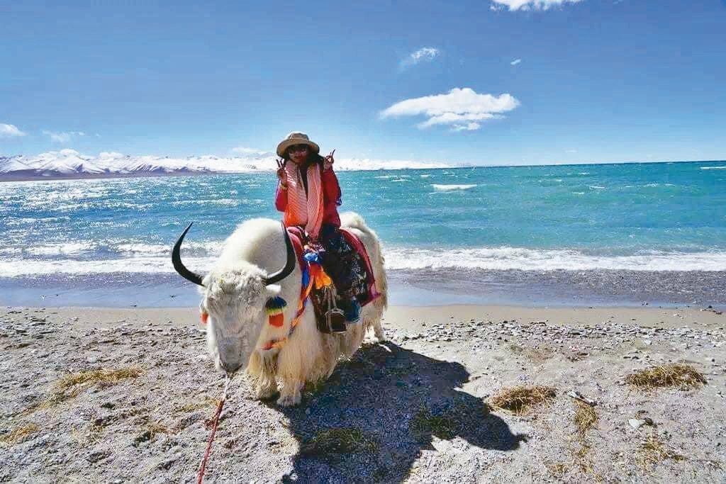 在西藏最大的湖「騰格里海」邊騎著白色的氂牛。 tina/供給