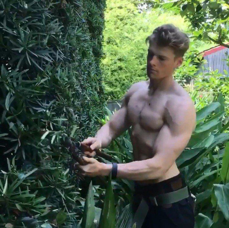 村雨辰剛拿著剪刀修剪草牆,還裸露出雄壯的雙臂與胸肌,身材精壯養眼。 圖/擷自tw...