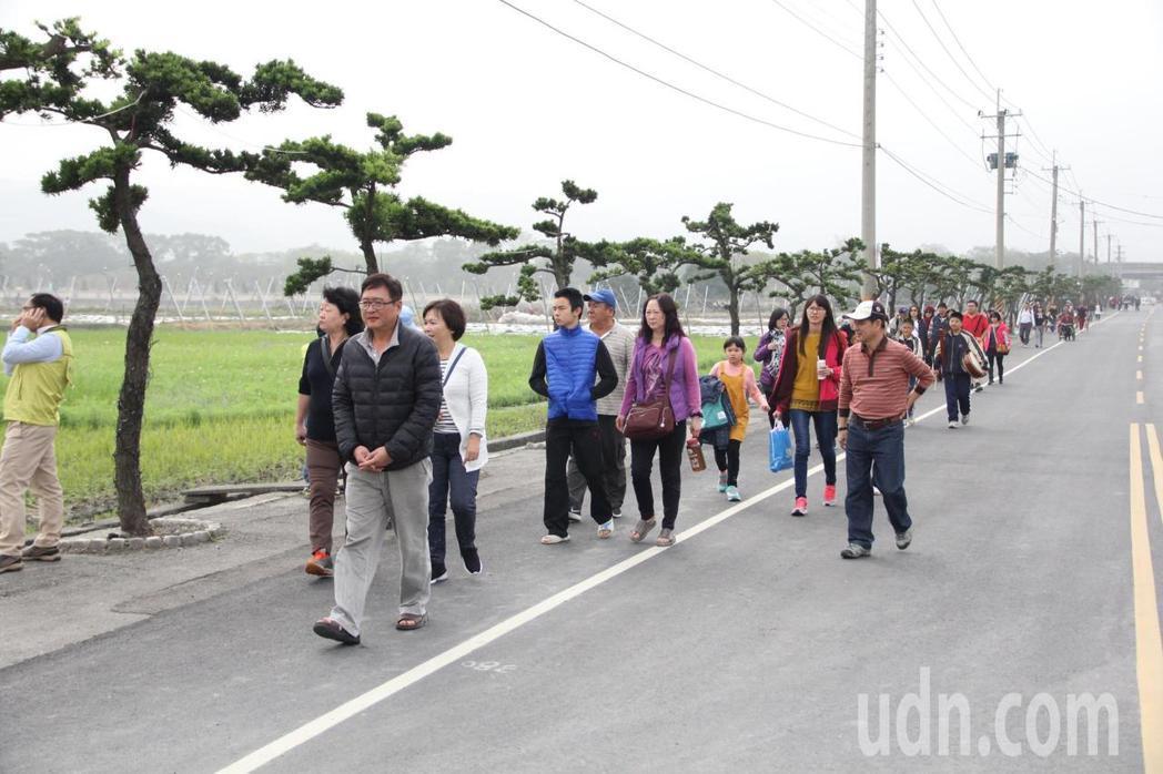 雲林縣林內鄉今明二天舉辦「春遊林內FUN松趣」活動,青松大道吸引許多民眾參觀。記者陳雅玲/攝影