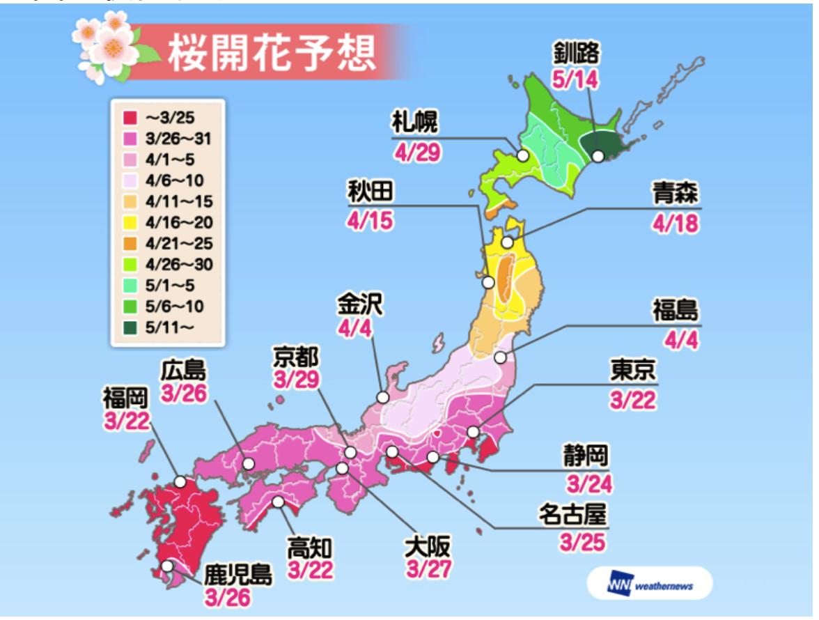 另一個櫻花預測網站Wethernews則是預計在3月22日東京最早開花。圖/翻攝...