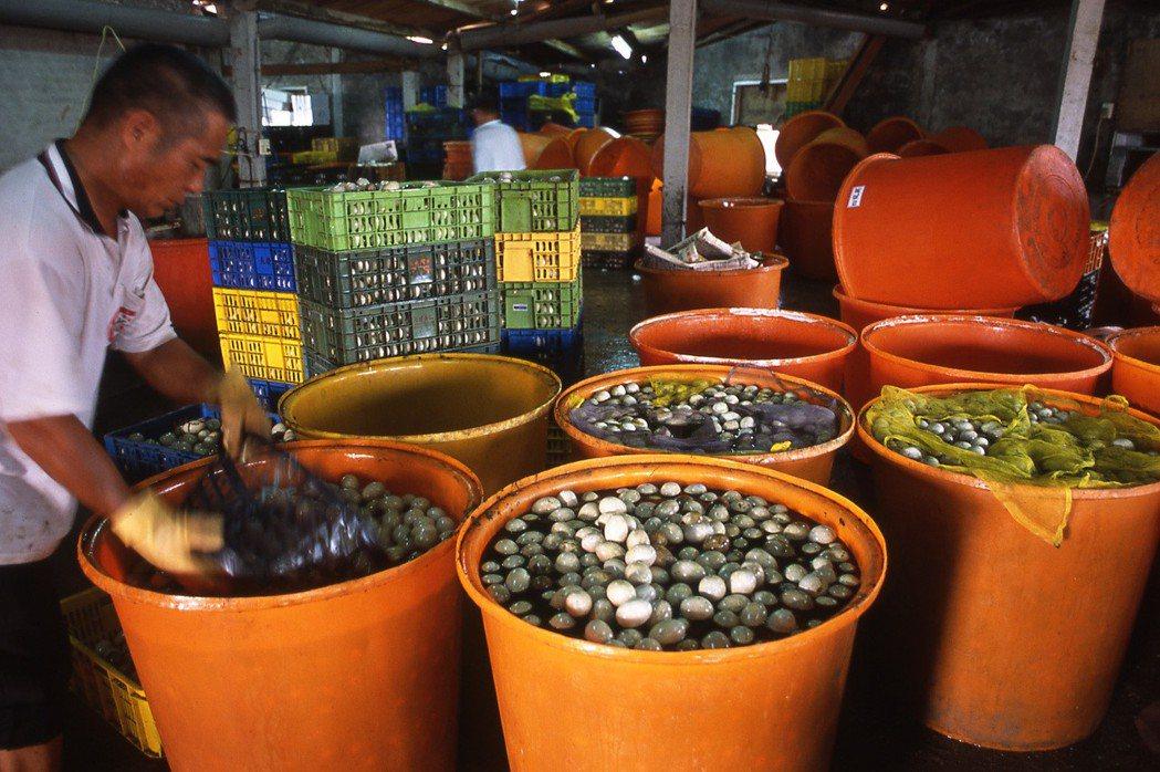 2005年伸港養鴨環境汙染事件,汙染都指向彰濱工業區的臺灣鋼聯。臺灣鋼聯是以電弧爐的廢棄物「集塵灰」為原料,製造氧化鋅,電弧爐所產生的戴奧辛占全國的58%。 攝影/柯金源