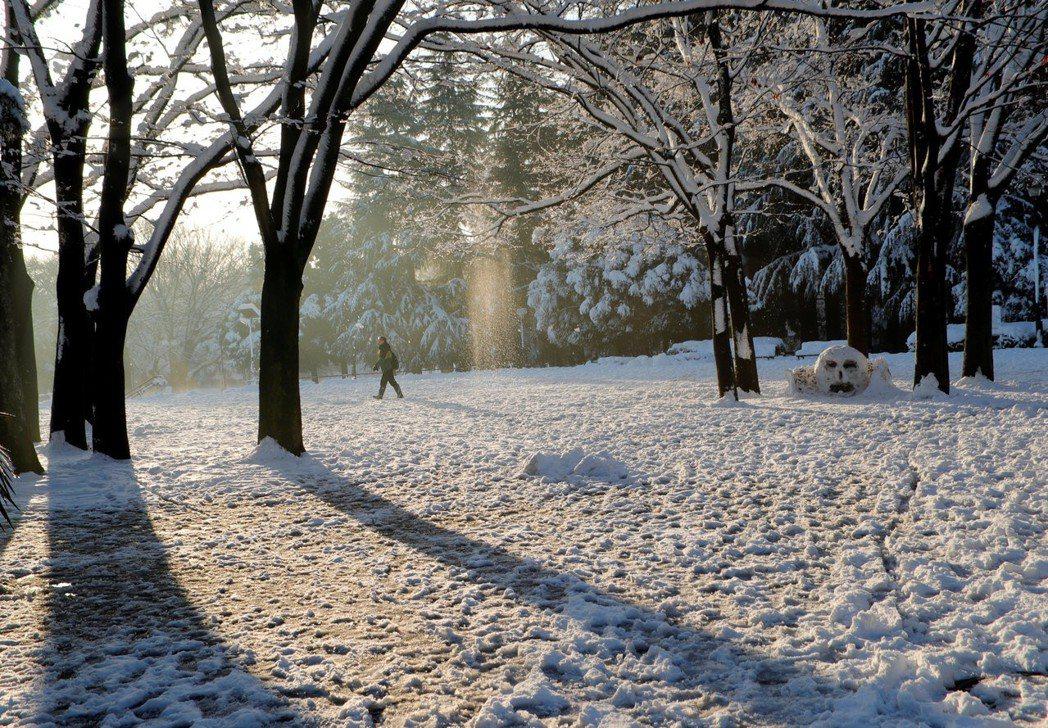 23日路人行過東京白雪皚皚的公園。 路透
