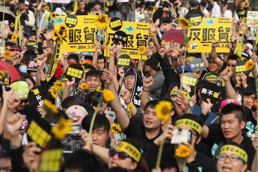 2014年太陽花學運,許多人手持太陽花,反對台灣與中國間的爭議性貿易協定。 圖/...