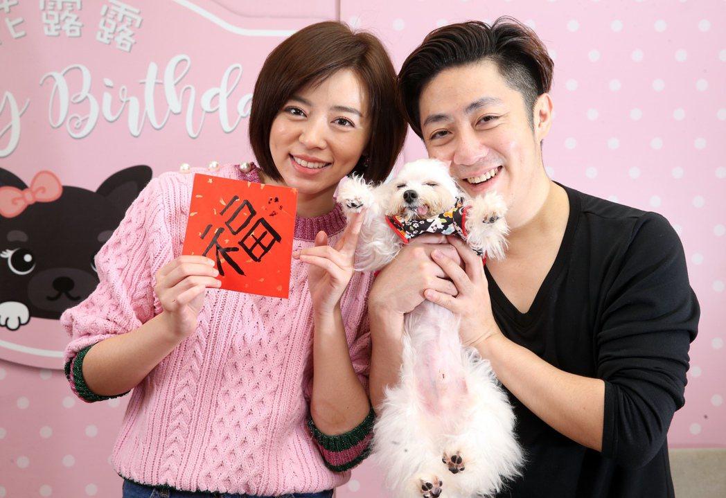 王瞳和艾成跟狗兒子一起寫春聯。記者徐兆玄/攝影