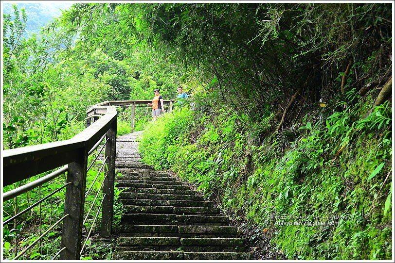 ↑繼續陡坡向上走塘湖古道,一路上都是石板階梯。