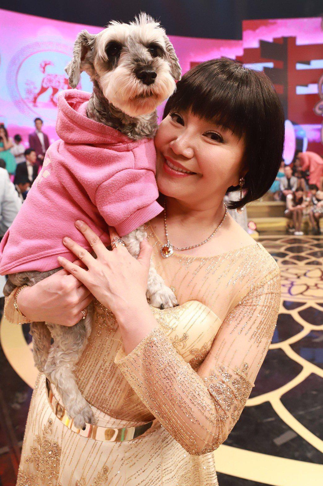 唐美雲抱愛犬上節目,8點檔也有演出。圖/民視提供