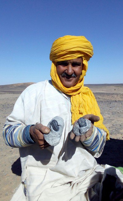賣化石的父親。