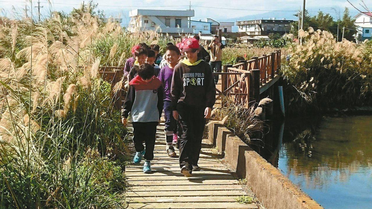 芒花飄搖的廊道連接公館和過嶺兩間小學,被後埤社區暱稱為「通學走廊。 張永德/提供