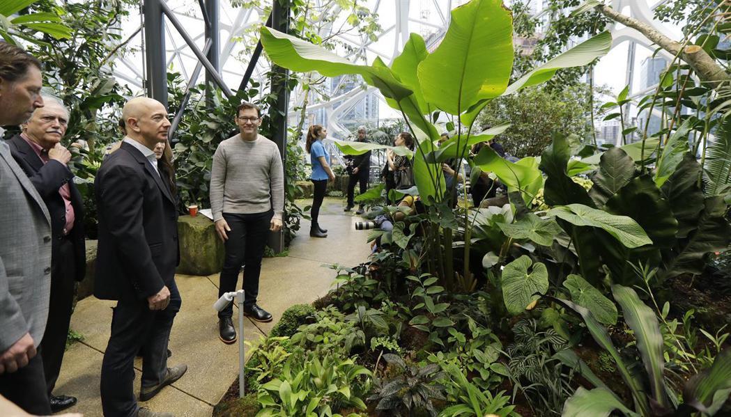 由於館內植物眾多,因此聘請許多園藝人員進行照料。路透