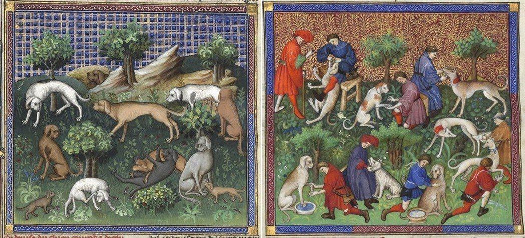 《狩獵大師》強調,應仔細照顧獵犬的生活起居與健康。左圖為書中附錄的犬隻類型圖,右...