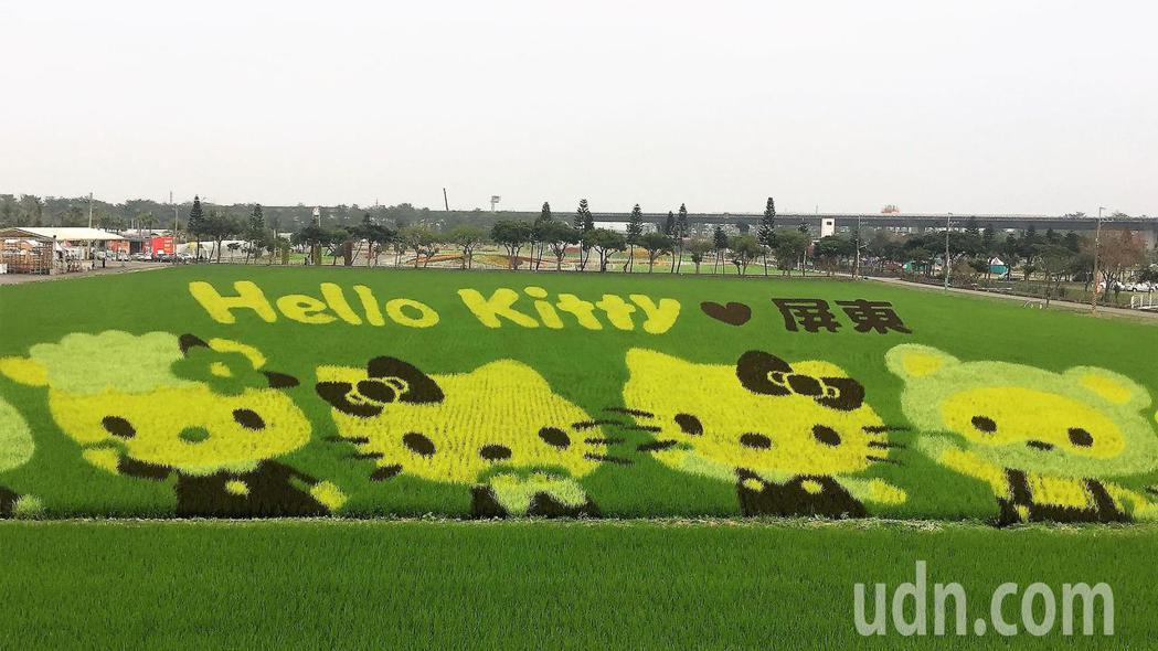 屏東熱帶農業博覽會本周六開園,彩稻田主角 Hello Kitty搶先亮相。記者翁...