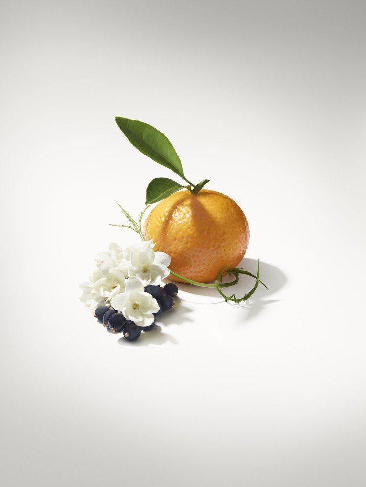 3月即將推出的全新女香「破曉Le Jour Se Leve」是明亮的柑橘、茉莉香...
