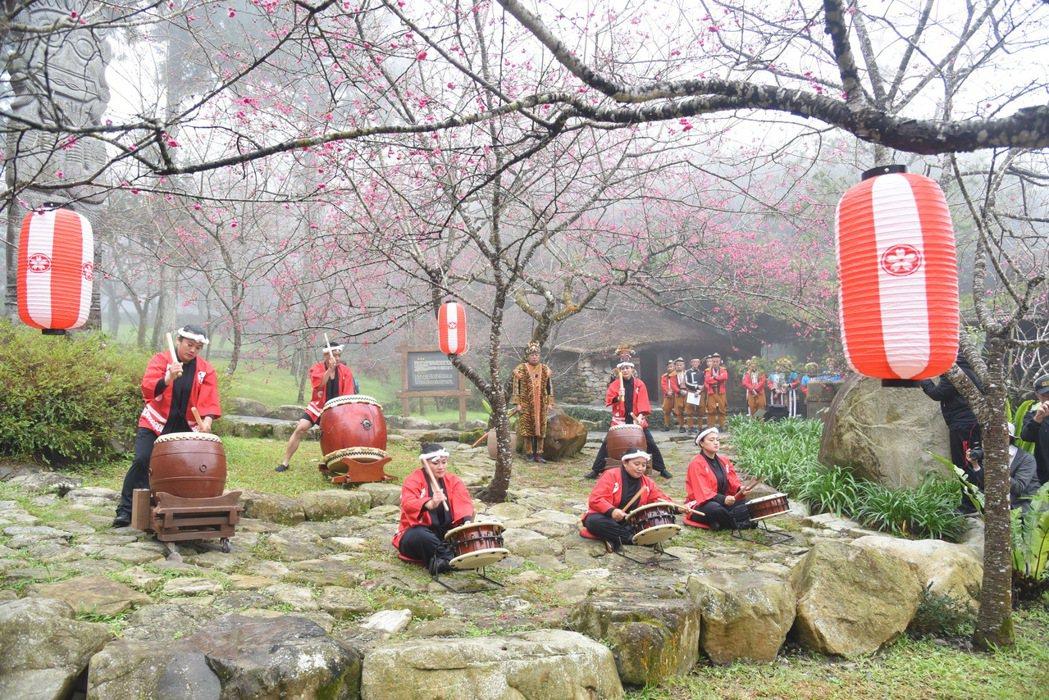 九族文化村今年櫻花祭「櫻為愛」前天登場,目前山櫻花嫣然綻放,之後八重櫻會跟著開。...