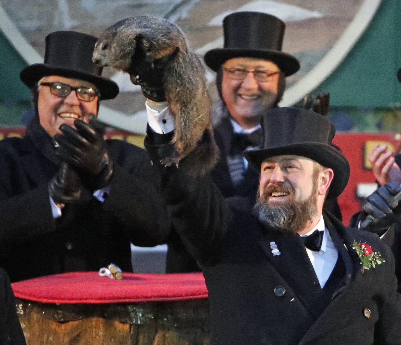 美國賓州傳統「土撥鼠日」早春預測,土撥鼠菲爾見影躲回巢穴,代表冬 季還有6周才結...