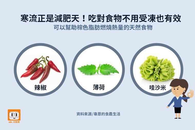 寒流正是減肥大好時機!吃對食物不用受凍也有效。 資料來源/韋恩的食農生活 製圖/...