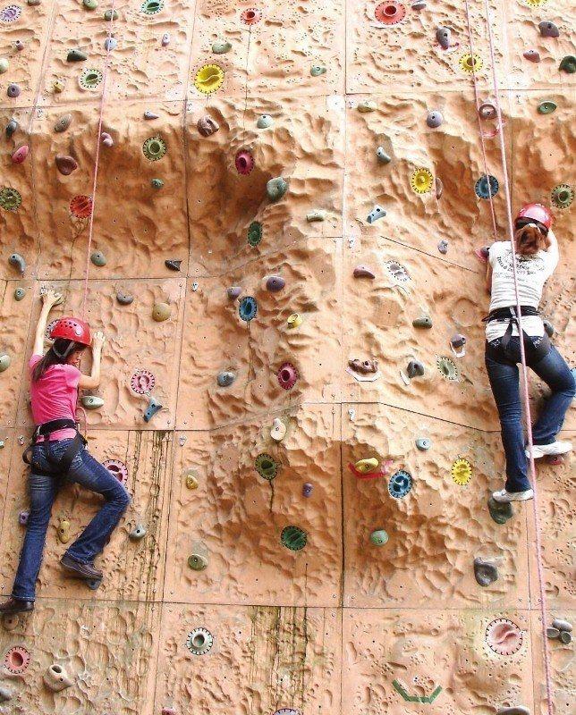 大板根裡的「有氧攀岩」設施,供旅客挑戰自我、釋放精力。 業者/提供