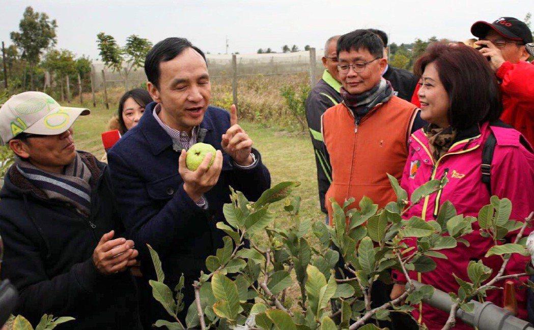朱立倫市長率隊於高屏地區產地召開說明會,輔導小農申請作為供應人供應有機蔬果,增加...