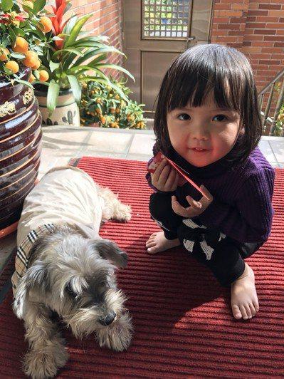毛小孩和小孩是最萌組合,但近年來寧養狗不養小孩的人愈來愈多。