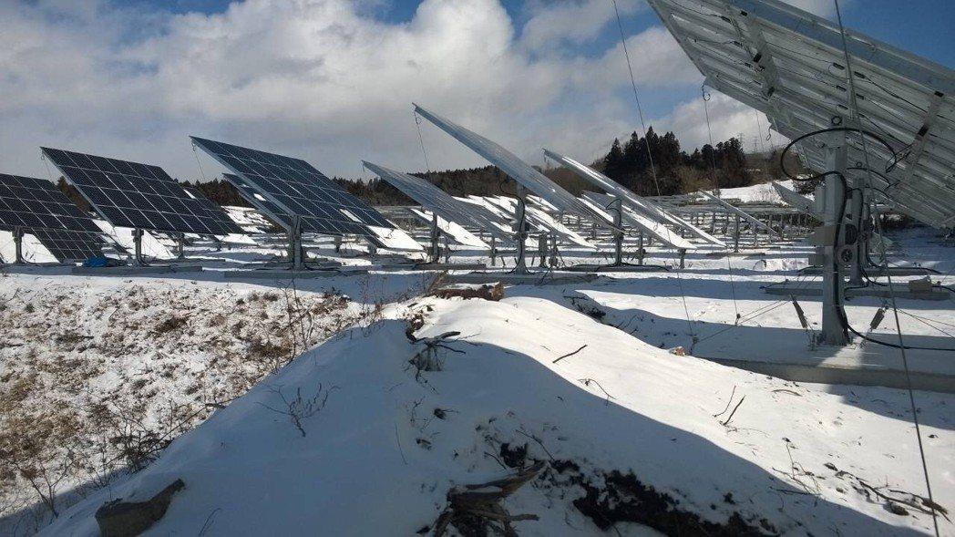 太陽光電的追日器,在雪地也照常發威。 太陽光電/提供
