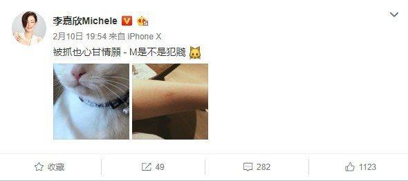 李嘉欣自曝被貓咪抓傷。圖/摘自微博
