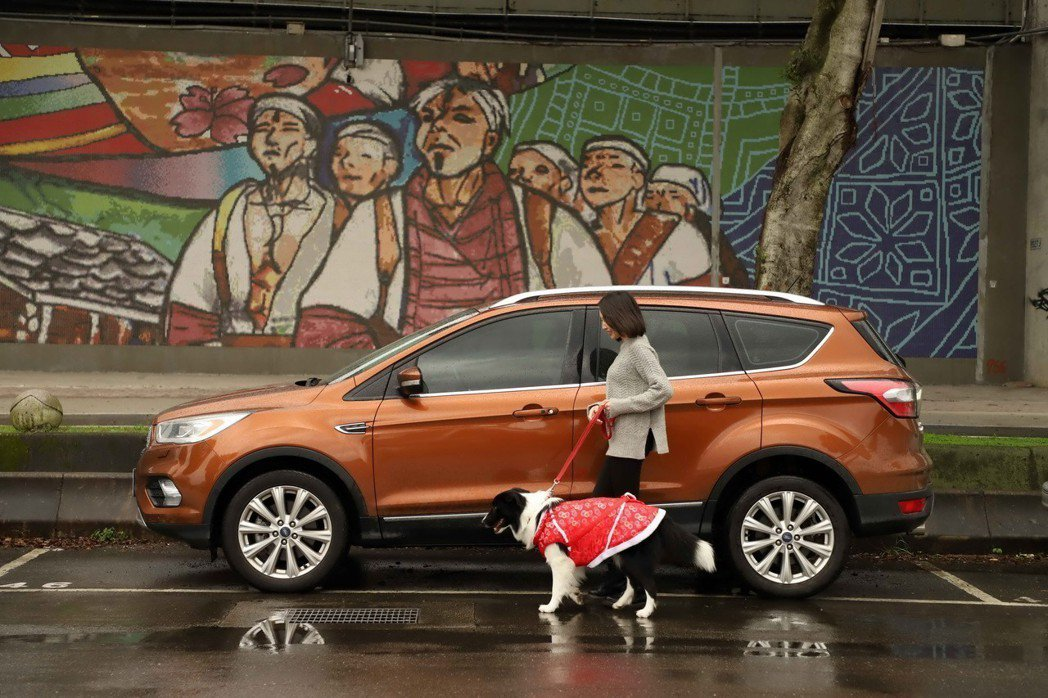 長距離的旅行對於人和寵物相當消耗體力,因此建議每隔一至兩個小時停車休息一下。下車前,記得給寵物繼上繩子,以免寵物過於興奮而跑遠。 圖/Ford提供