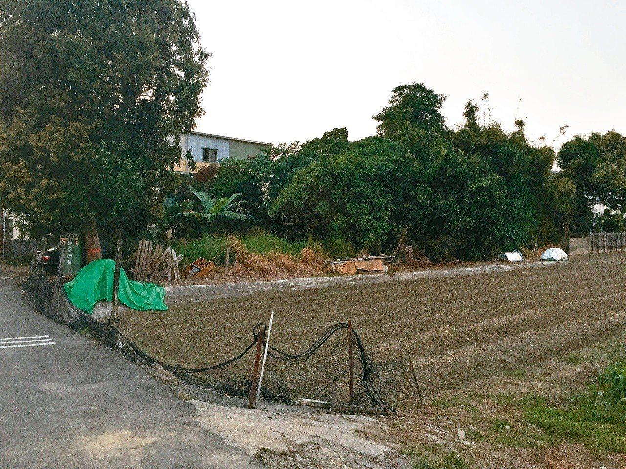 居家附近常見的農田。