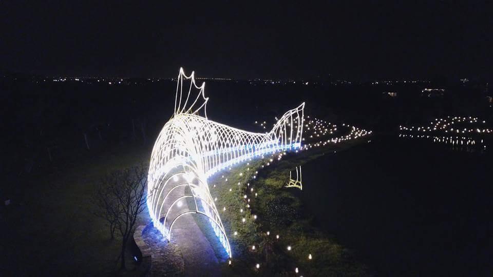 傳藝宜蘭園區營造年節「魚耀隧道」大型地景,彎曲的「光雕魚」閃耀放光,成了蘭陽平原...