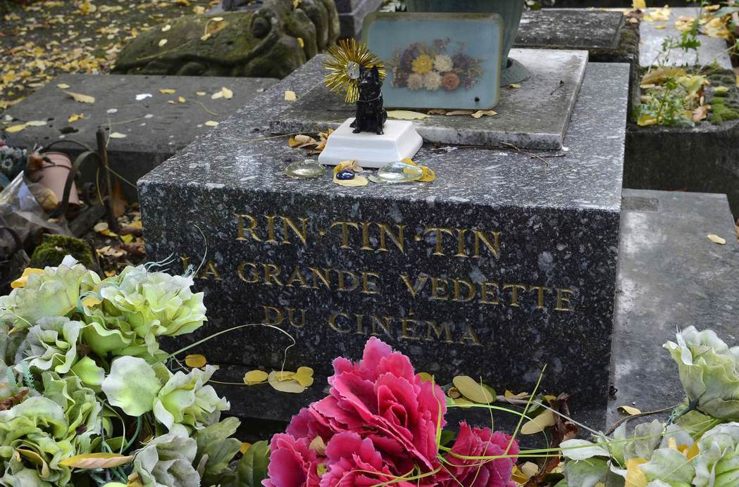 位於法國的任丁丁之墓。後來鄧肯賣掉自己的房子,籌錢把任丁丁的遺體送回牠的出生地法...