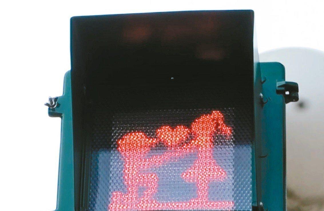 屏東小綠人脫單了,紅燈的求婚畫面,最吸引民眾目光。 記者翁禎霞/攝影