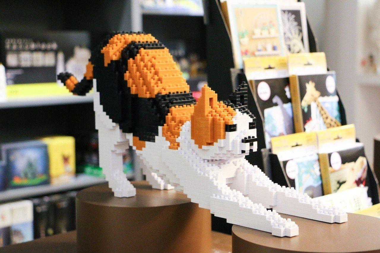 南寶積木店展示許多組裝好的微型積木,其中許多是可愛吸睛的動物。 記者謝欣倫/攝影