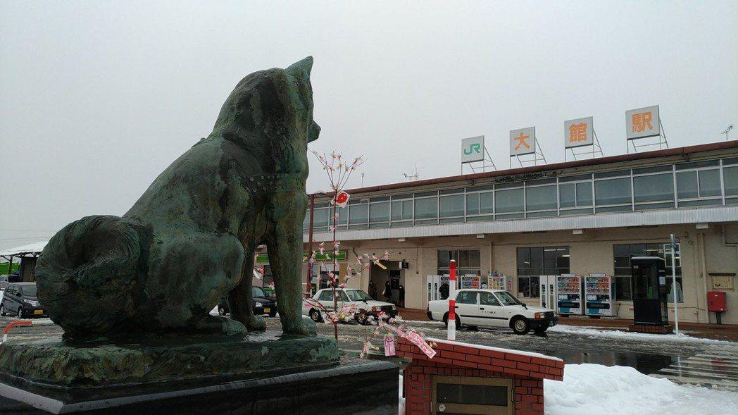 影/忠犬小八的故鄉 靠秋田犬振興當地觀光