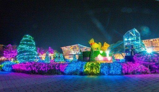 彰化縣政府每年春節都在溪州公園舉辦「花在彰化」行春活動,今年首度增加夜間燈會。 ...