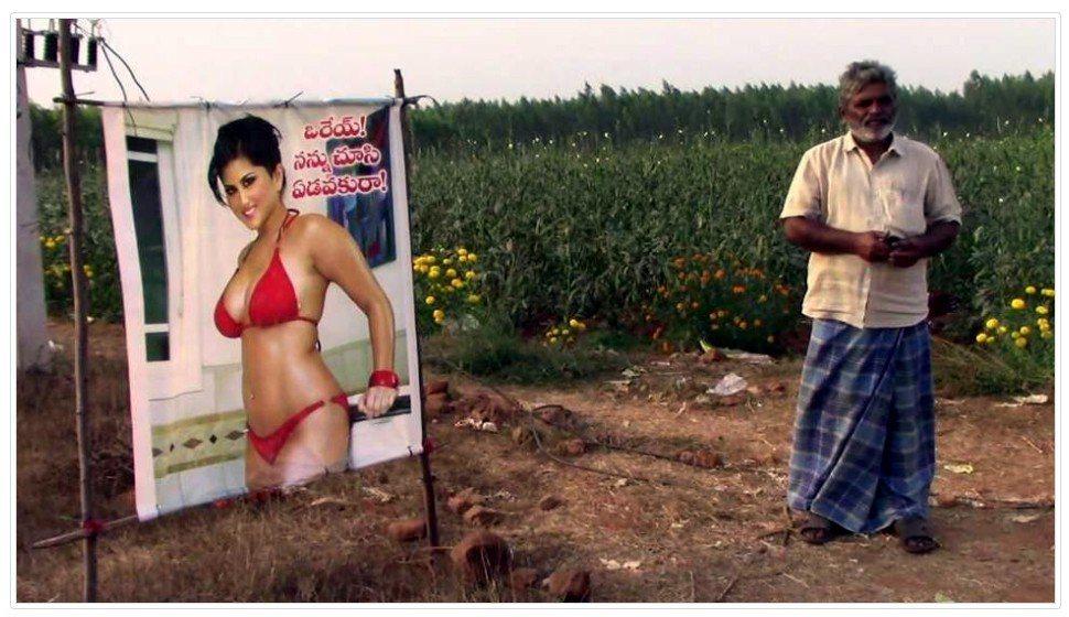 印度農夫巧用美人計 保護作物大豐收