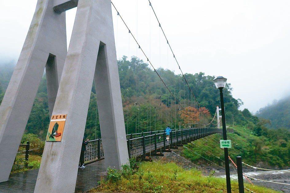 走過多望吊橋到山谷另一端,走訪鳩之澤自然步道,欣賞多樣的動植物生態。 記者張芮瑜...