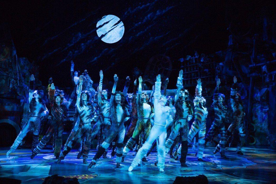 「貓」劇3月1日在台上演。圖/寬宏提供