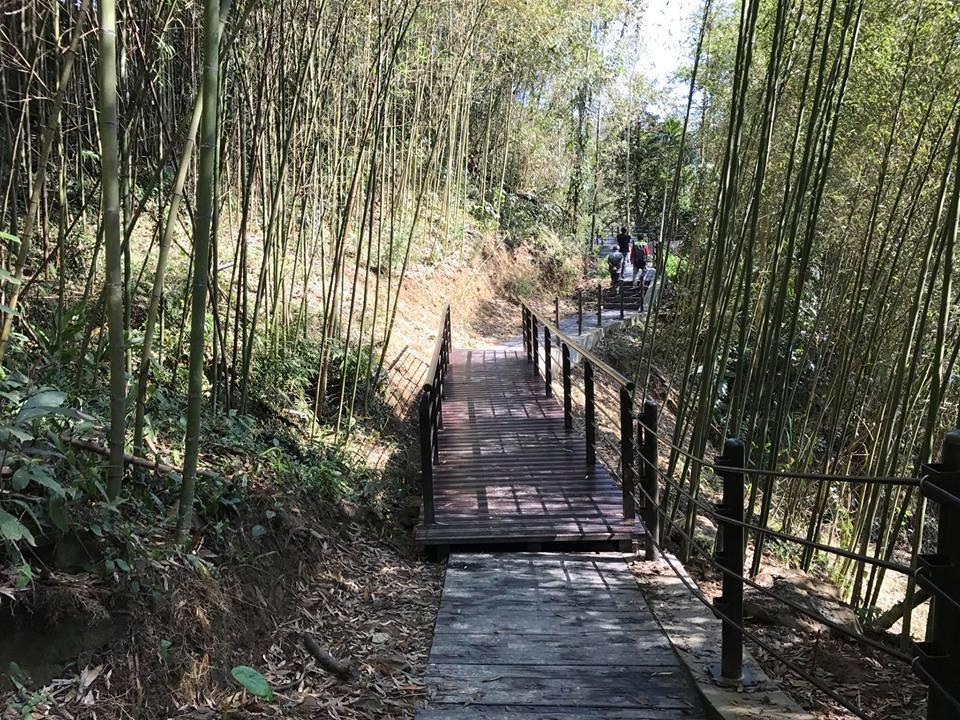 公興村龍美登山健行步道圖/阿里山管理處提供