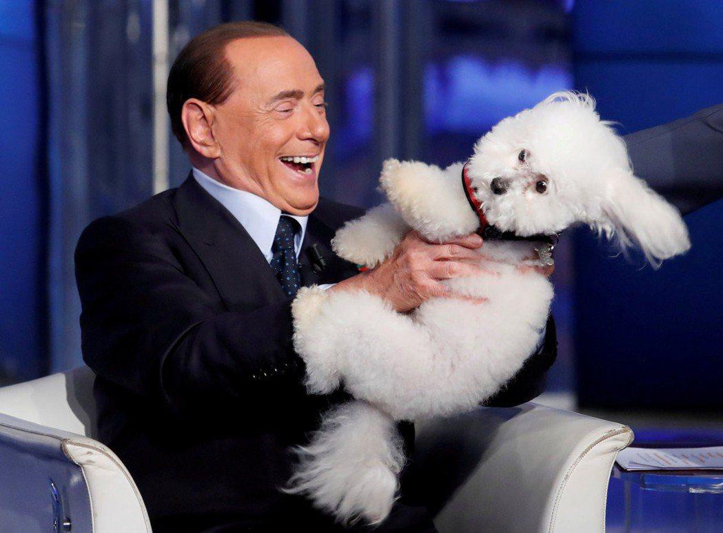 醜聞纏身的前總理貝魯斯柯尼,特別關愛一隻名為「嘟嘟」的白色貴賓犬,時常帶著牠到處...