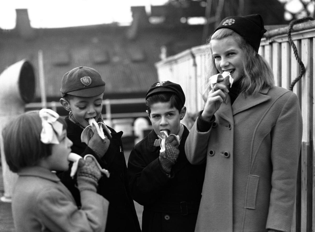 圖為1945年,戰後第一批運到英國的西印度群島香蕉。 圖/美聯社