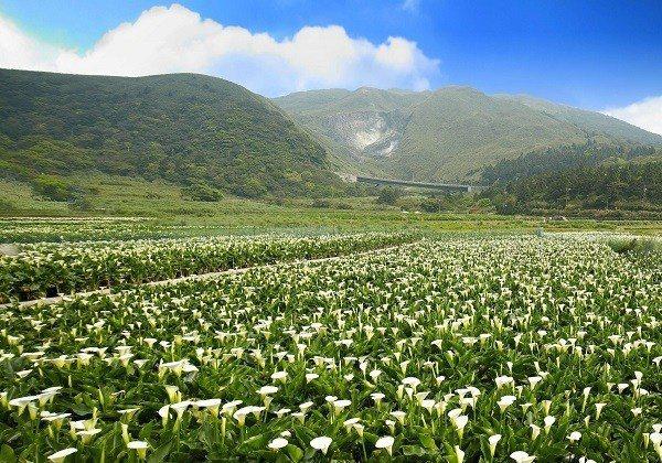 圖/台北旅遊網
