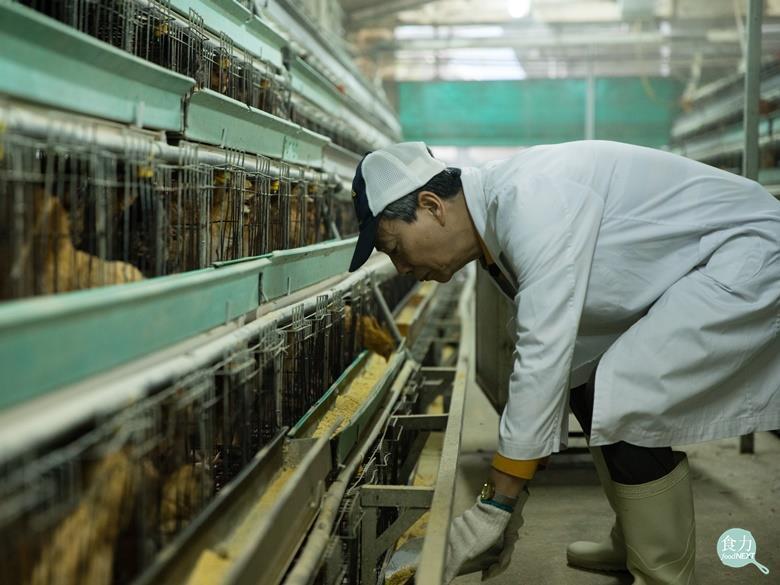 香港的禽流感防疫思維早已從應變(React)改為預防(Prevent),藉由良好...