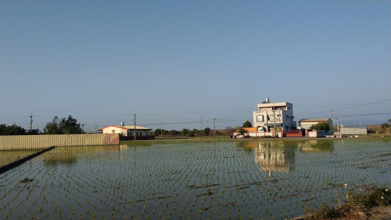 台中市烏日區溪尾里以種植水稻居多,巷道狹小。記者趙容萱/攝影