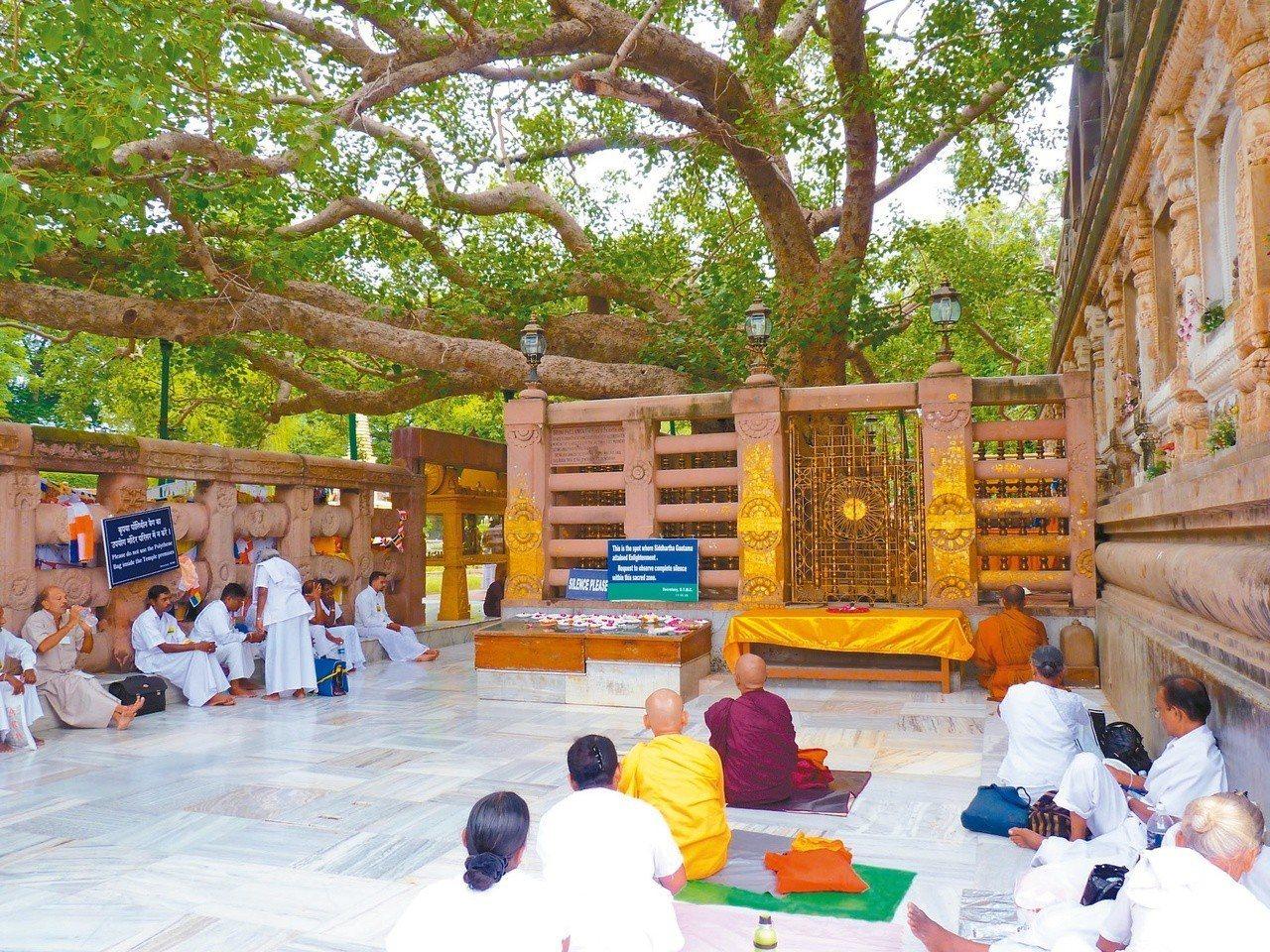 佛祖悟道的菩提樹下,金剛座圍欄盾外。