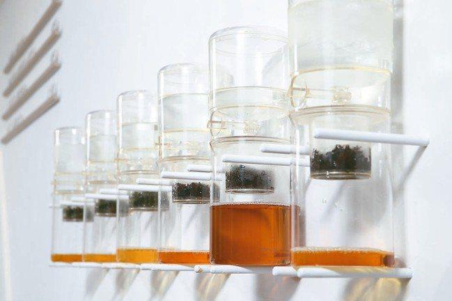 冰滴茶費時,一天僅有6至12杯。 圖/許正宏攝影