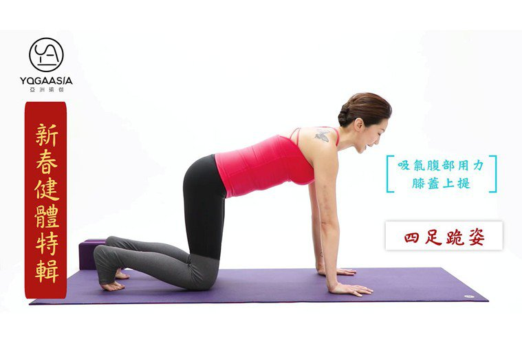 四足跪姿。 圖片提供/亞洲瑜伽